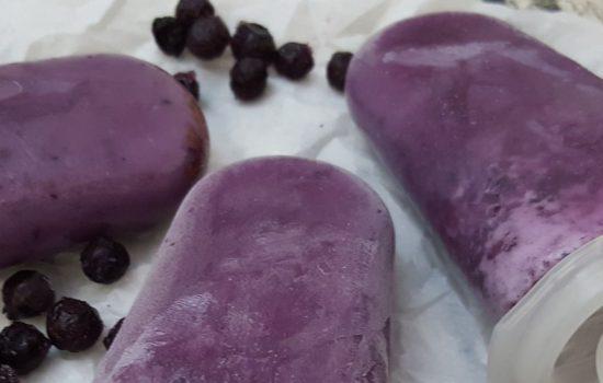 Sucettes glacées aux bleuets – Popsicles